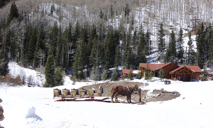 Sleigh at the Pine Creek Cookhouse