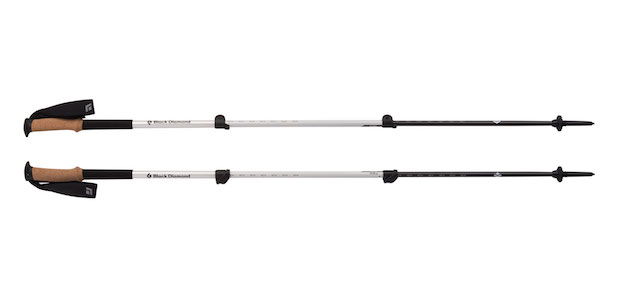 112185 Alpine Carbon Pole Extended web
