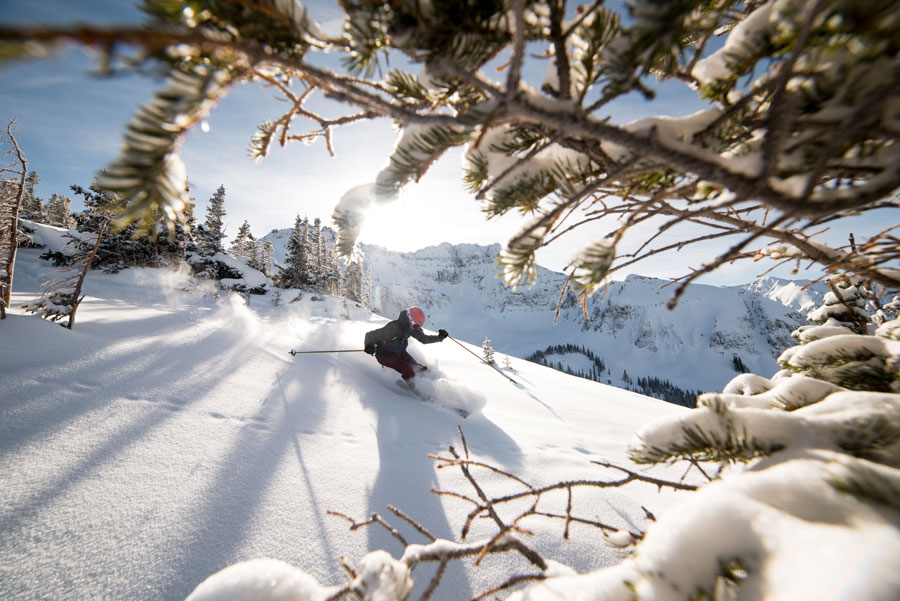 telluride-mtn-collective-pass-web
