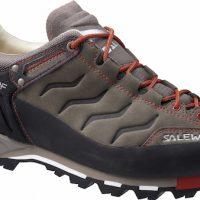 Salewa Mountain Trainer L