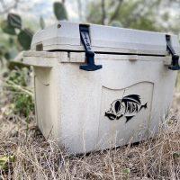 Taiga Terra – The First Premium Cooler Made From Hemp
