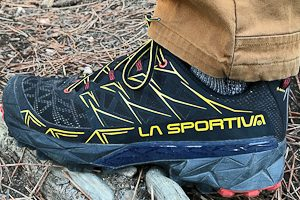 The Best Hiking Shoes