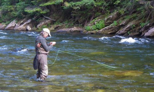 Fly Fishing Tools of the Trade