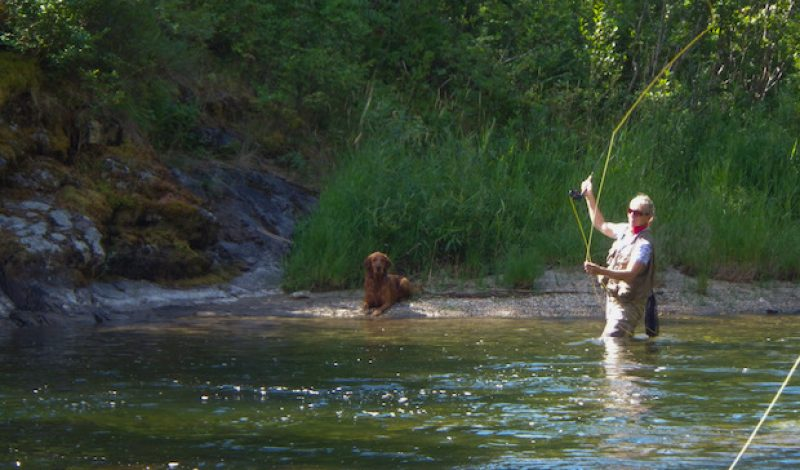 How to Pick the Right Fly Fishing Leader
