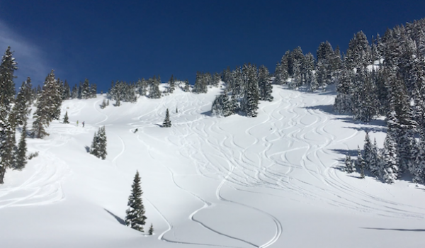 Backcountry Skiing in Crested Butte: The Cat's Pajamas