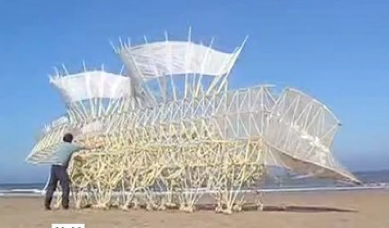 The Amazing Strandbeests of Holland