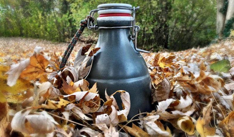 The Portland Growler Company GriGri is the Growler You've Been Searching For