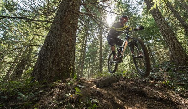 Mountain Bike Geometry Explained