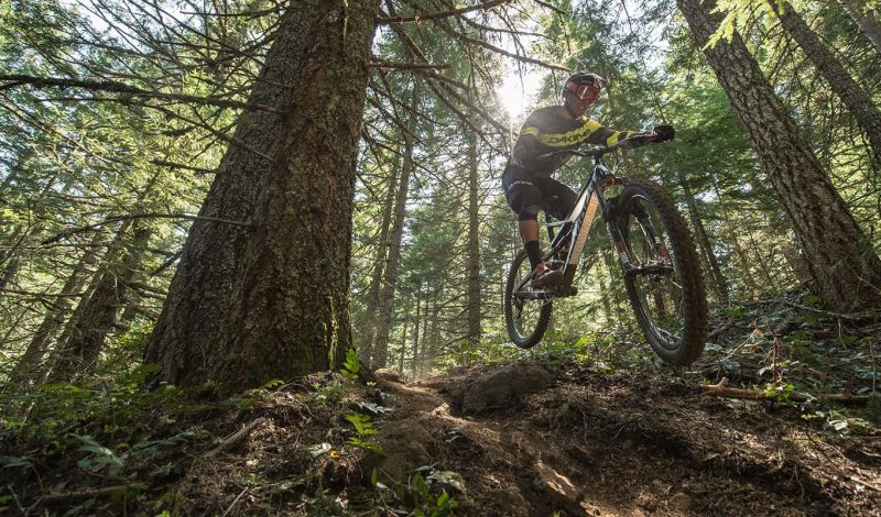 Mountain Bike Geometry Explained | Gear Institute