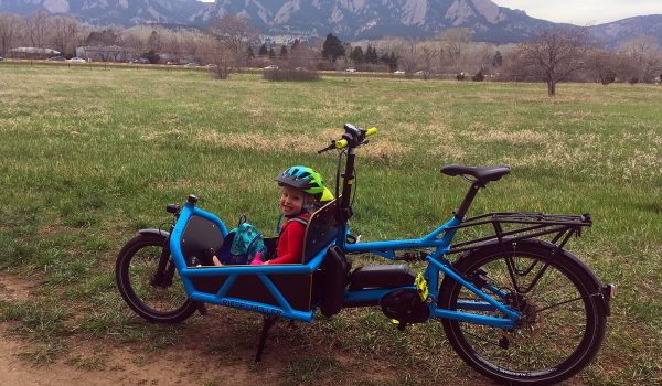 Riese + Müller Load eCargo Bike Review
