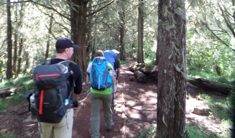 The Perfect Kit: Ultralight Backpacking
