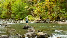 Strategies for fishing wilderness waters