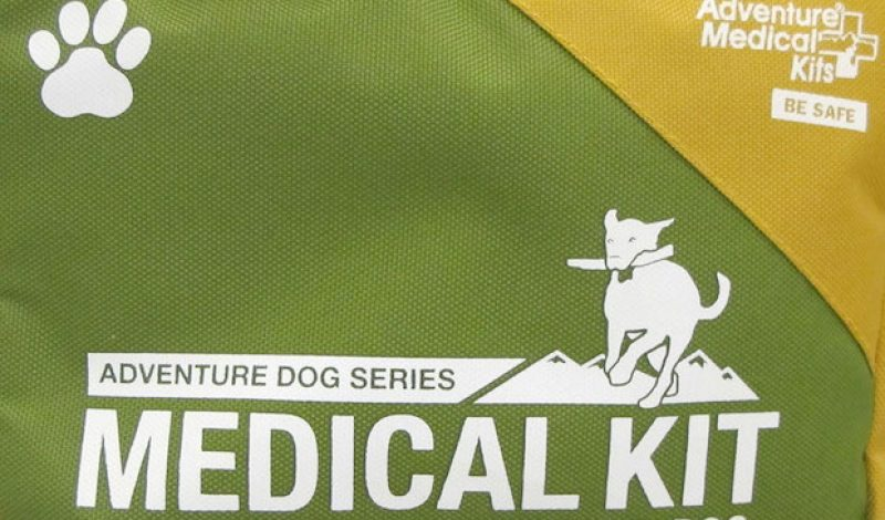 Keep Your Pup Safe With a Dog-Specific First Aid Kit
