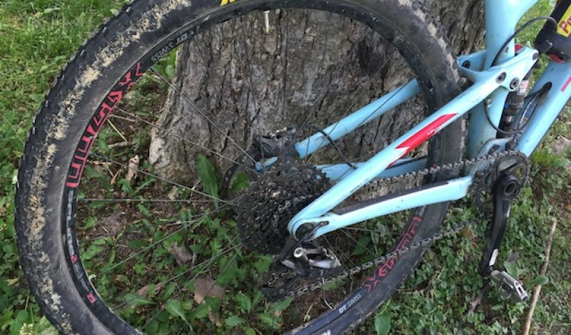 Maxxis Ardent Mountain Bike Tire Review