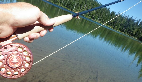 Trout Fly Rods