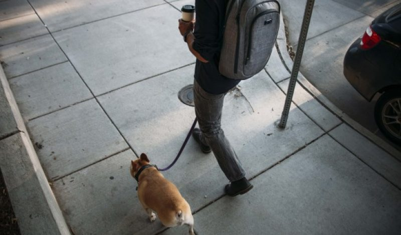 This Smart Backpack Was Built with the Road Warrior in Mind